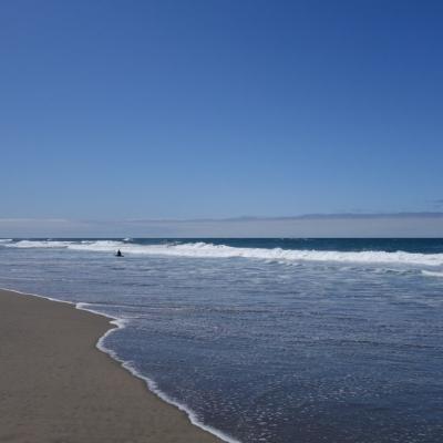 free-outdoor-yoga-ocean-beach-tony-eason-6