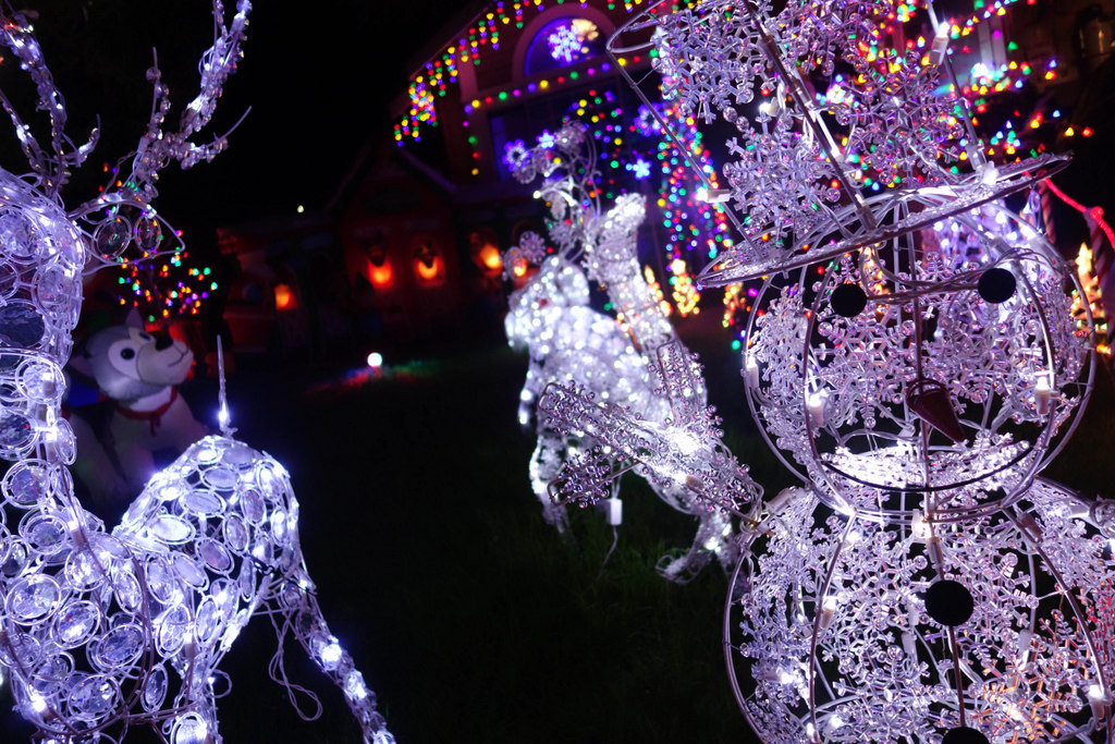 treeside-court-christmas-lights-2014-10