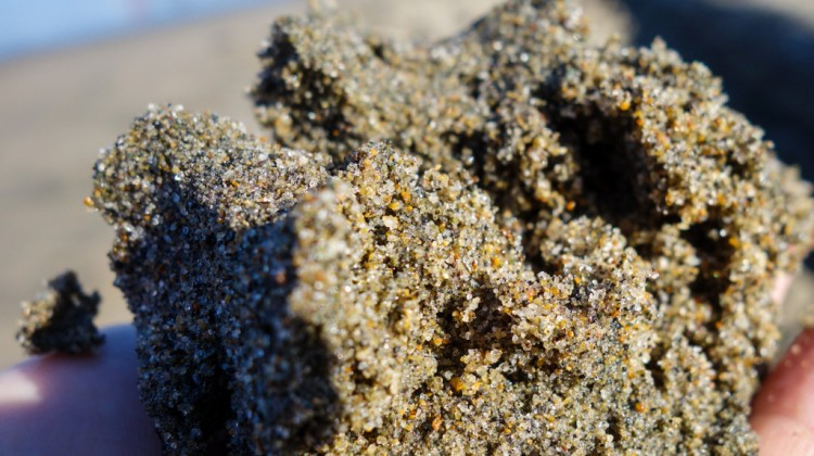 Individual grains can be seen in this image of a handful of sand taken from Crissy Field.  In construction, beach sand is considered less desirable than riverbed sand because its high salt content corrodes steel reinforcements.