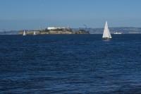 Kirk-Lombard-Sea-Forager-Bay-And-Alcatraz