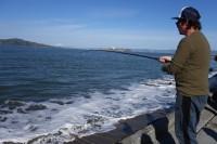 Kirk-Lombard-Sea-Forager-Fishing-1