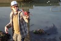 Kirk-Lombard-Sea-Forager-Red-Kelp-Crab