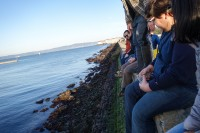 Kirk-Lombard-Sea-Forager-group