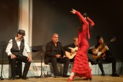 san-francisco-international-arts-festival-AguaClara-Flamenco-4